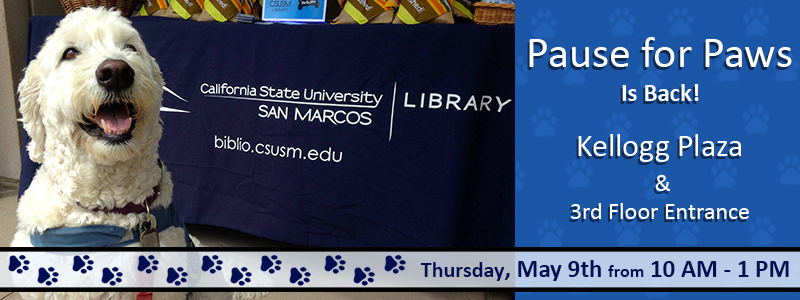 Slideshow image linking to information about Pause for Paws is back!